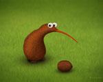 Obrázek - Kiwi Kiwi