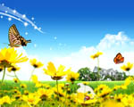Obrázek - Překrásné květiny u domova