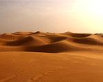 Obrázek - Africká poušť