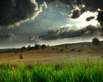 Obrázek - Čertovo pole