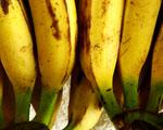 Obrázek - Dnešní menu banánový koktejl