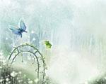 Obrázek - Volnost v zimní zahradě