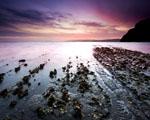 Obrázek - Když ocean odchází