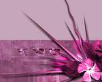 Obrázek - Květiny v růžové abstrakci