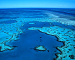 Obrázek - Letecký pohled na korálové útesy na Bahamách