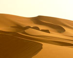 Obrázek - Sahara a její písčité duny
