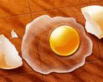 Obrázek - Katatastrofa s vajíčkem