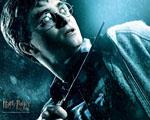 Obrázek - Harry Potter v detailu
