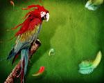 Obrázek - Rozpité barvy papouška