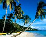 Obrázek - Pláž Grand Anse Grenada
