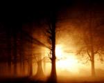 Obrázek - Mlha duchů