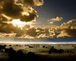 Obrázek - Západ slunce nad pacifikem
