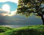 Obrázek - Oko na nebi