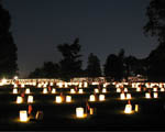 Obrázek - Prosvícený hřbitov v noci