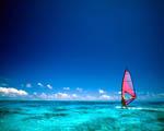 Obrázek - Windsurfing Bora Bora Francouzská Polynésie