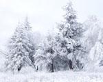 Obrázek - Sněhová scenérie ve Shipka Pass