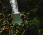 Obrázek - Zapomenutý vodopád na opuštěném ostrově