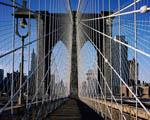 Obrázek - Brooklynský most New York