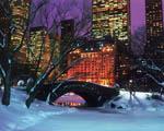 Obrázek - Centrální park a zimní New York