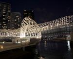 Most jako pavoučí síť