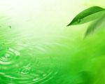 Obrázek - Zelený list a kapky na vodě
