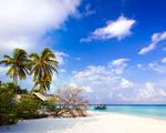 Obrázek - Letní dovolená 2012