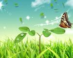Obrázek - Pohádkový svět motýla