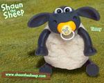 Obrázek - Malá ovečka Timmy
