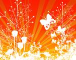 Obrázek - Oranžový svět motýla