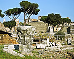Obrázek - Forum Romanum - Řím