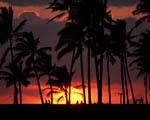 Obrázek - Více než romantický západ slunce