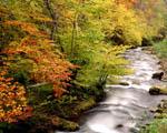 Obrázek - Národní park Asturias ve Španělsku