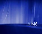 Obrázek - Logo Longhorn M6