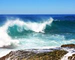 Obrázek - Mořská vlna v pohybu