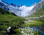 Obrázek - Letní dovolená ve Švýcarsku 2011