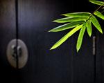 Obrázek - Probuzení v japonském stylu