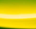 Obrázek - Žlutozelený přechod