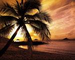 Obrázek - Pohádkový západ slunce pro všechny