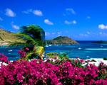 Obrázek - Rodinná dovolená ve Francouzské Polynésii