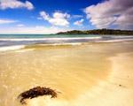 Obrázek - Lidu prázdná pláž na Novém Zélandu