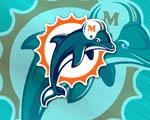 Obrázek - Miami Dolphins americký fotbal