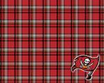 Obrázek - Tampa Bay Buccaneers americký fotbal