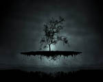 Obrázek - Létající strom