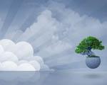 Obrázek - Strom života