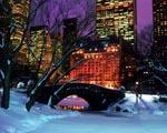 Obrázek - Vánoce v New Yorku