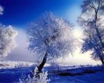 Krásná zimní scenérie