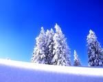 Obrázek na plochu - Zimní krajina