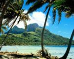 Obrázek - Exotická dovolená
