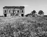 Obrázek - Černobílá zřícenina domu