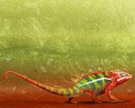 Obrázek - Pestrobarevné zvířátko Chameleón